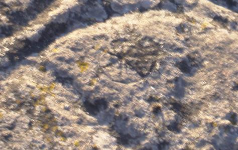 Detalle de pequeña rueda dentro del signo lineal con valor fonético de R de la palabra RT (pIE *Rot-, 'rueda'). Sitio Los Aulagares, Zalamea la Real, Huelva.