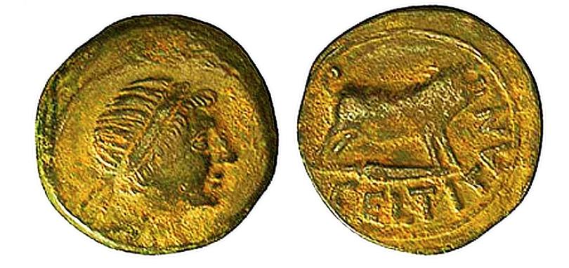 CELTITANIA - Moneda de Celtitan (Peñaflor, Sevilla)
